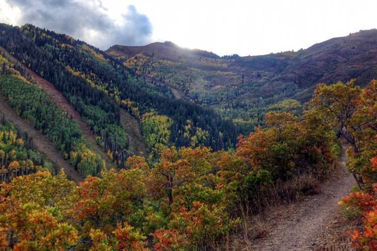 Hiking Trails in Park City